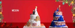 Sacha's Cake-khappa.pk